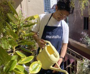 maWaRu HORIE blog